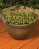 Majestic Planter - Medium (GFRC in Trasacco finish)