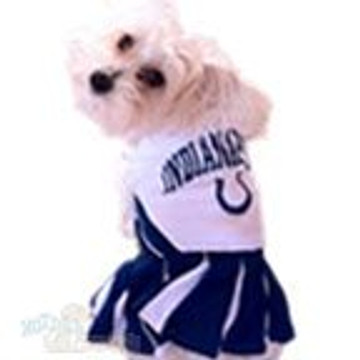 Indianapolis Colts NFL Football Pet Cheerleader Outfit
