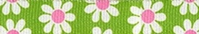 Green Daisy Groomer Loop