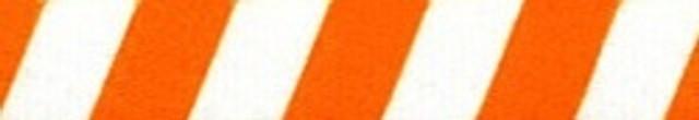 Team Spirit Orange and White Coupler Dog Leash