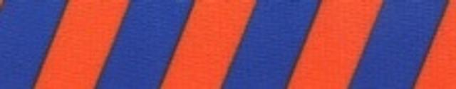 Team Spirit Orange and Blue Coupler Dog Leash