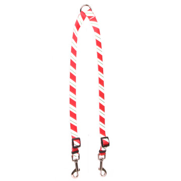 Peppermint Stick Coupler Dog Leash