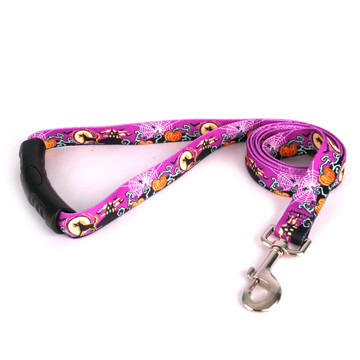 Scary Night EZ-Grip Dog Leash