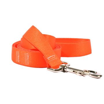 Solid Orange Dog Leash