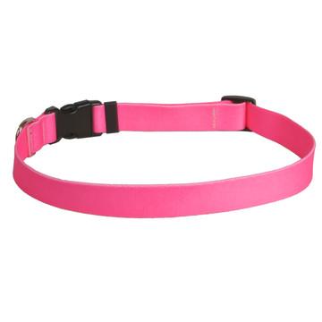 Solid Pink Dog Collar