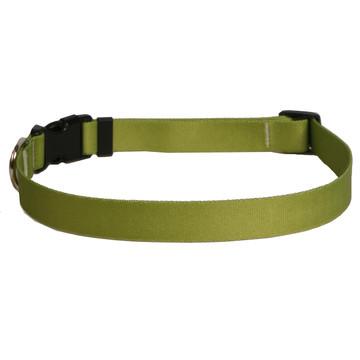 Solid Olive Dog Collar