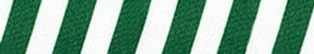 Team Spirit Green and White Waist Walker