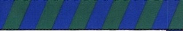 Team Spirit Blue and Green Waist Walker
