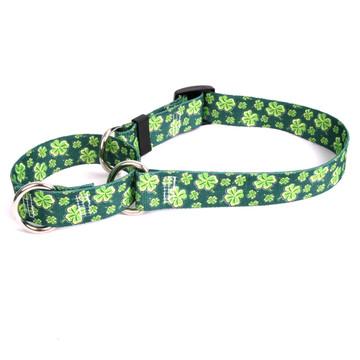 4 Leaf Clover Martingale Dog Collar