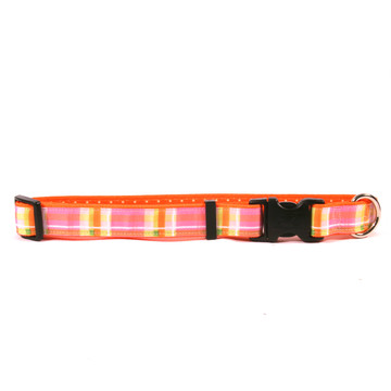 Madras Pink on Orange Polka Grosgrain Ribbon Collar
