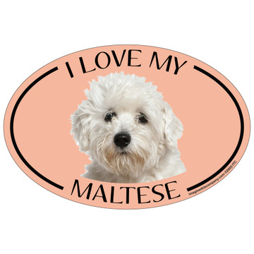 I Love My Maltese Colorful Oval Magnet