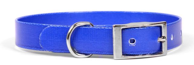 Solid Royal Blue Elements Dog Collar