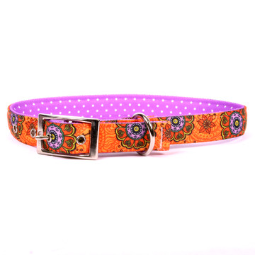 Folk Flowers Uptown Dog Collar