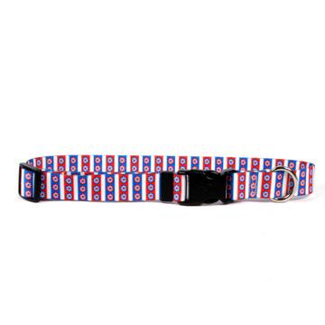 American Daisy Break Away Cat Collar