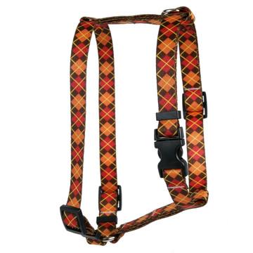 Argyle Fall Roman Style H Dog Harness
