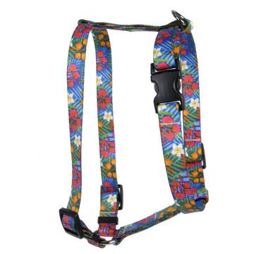 Hibiscus Paradise Roman Style H Dog Harness