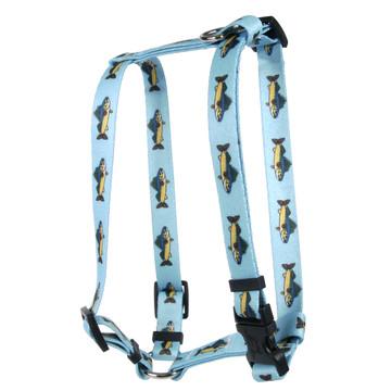Walleye Roman Style H Dog Harness