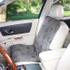 Single Seat Pawprint Car Seat Cover