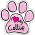 I Love My Collie PINK Scribble Paw Magnet