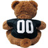 Pittsburgh Steelers NFL Teddy Bear Toy