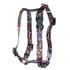 Vintage Comics Roman Style H Dog Harness