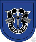 STICKER U S ARMY FLASH  19TH SPECIAL FORCES GROUP
