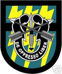 STICKER U S ARMY FLASH  12TH SPECIAL FORCES GROUP