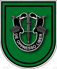 Sticker U S Army Flash 10th Special Forces Group M C