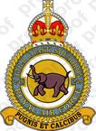 STICKER British Crest - RAF - 249 Squadron