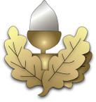 STICKER British Collar Badge - Cheshire Regiment