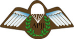 STICKER British Badge - Assistant Parachute Jump Instructor