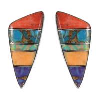 Sterling Silver Earrings Multi Gemstone E1020-C00