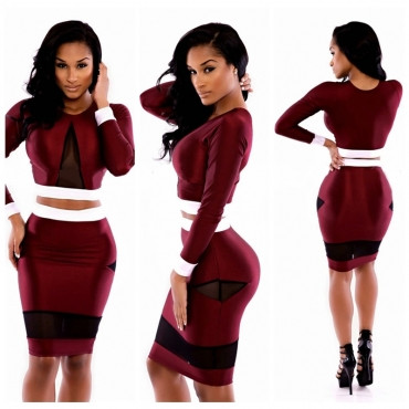 Long Sleeves Mesh Patchwork Wine Red Two-piece Sheath Mini Dress