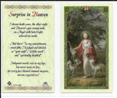 Laminated Prayer Card Surprise in Heaven