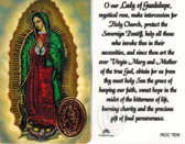 Prayer to Our Lady of Guadalupe Prayer Card with Medal