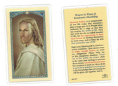 Prayer In Time Of Economic Hardship Laminated Prayer Card