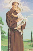 St. Anthony Wallet Size Card