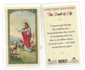 The Road Of Life Laminated Prayer Card