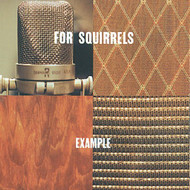 Example By For Squirrels On Audio CD Album 1995 - DD587458