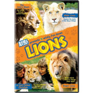 Lions On DVD - EE596373