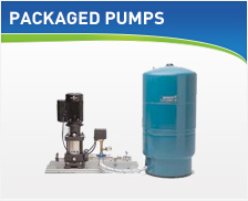 packagedpumps.jpg