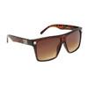 Unisex Sunglasses DE5015 Tortoise Frame