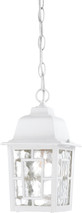 """NUVO Lighting 60/4931 Banyan 1 Light 11"""" Outdoor Hanging with Clear Water Glass"""