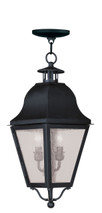 LIVEX Lighting 2546-04 Amwell Outdoor Chain Lantern in Black (2 Light)