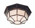 "Benkert 4"" Outdoor Black Copper Rustic Flushmount Lantern  with Black Rustic Octagonal Metal Frame"