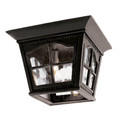 """Briarwood 8"""" Outdoor Black Rustic Flushmount Lantern with Traditional Scalloped Window Panes"""