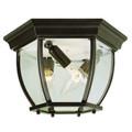 "Trans Globe Lighting 4907 BG 6.5"" Outdoor Black Gold Traditional Flushmount Lantern"