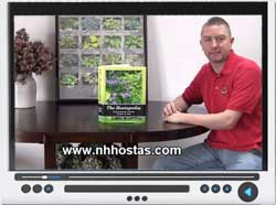 video-hostapedia.jpg