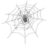 Ovrs2301 - Spider on Web
