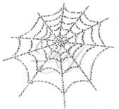 Ovrs3213 - Spider Web
